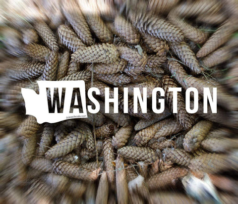 Washington Vinyl Decal - Washington State Decal, Washington Sticker, PNW Decal, PNW Sticker, Laptop Sticker, Car Decal, Window Decal - Dukes Decals