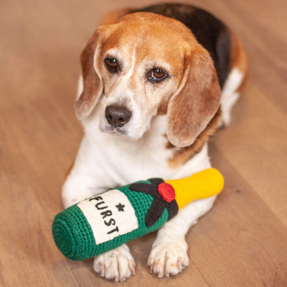 FURST - Adorable Beagle with her Champagne toy