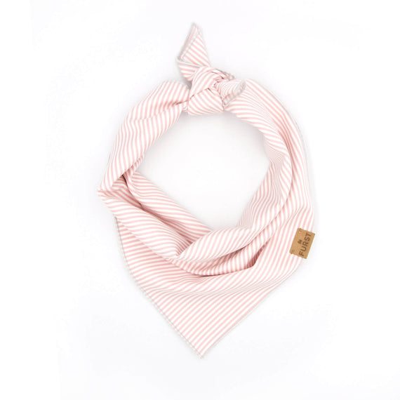 FURST - High-end bandana for cat in 100% cotton striped pink