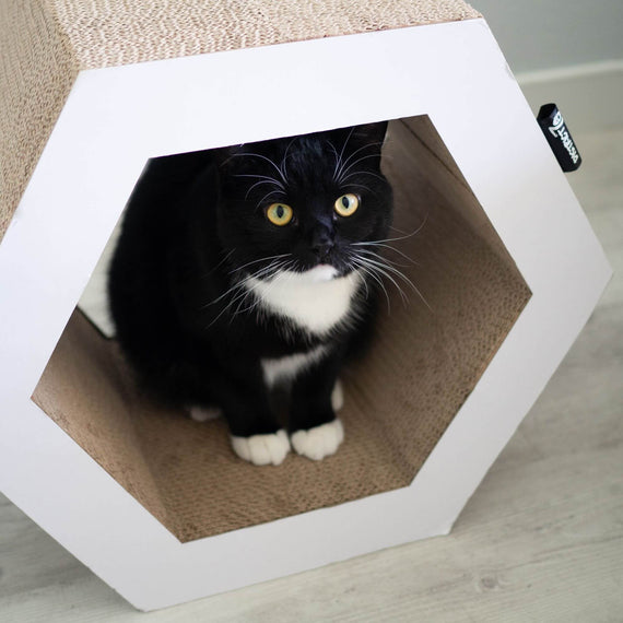 FURST - High-end scratching post in the shape of a Hexagon and original natural scratching post for white cats