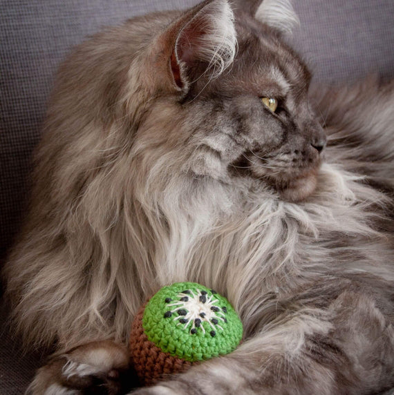 FURST - The Kiwi is a high-end and interactive toy for cat to throw