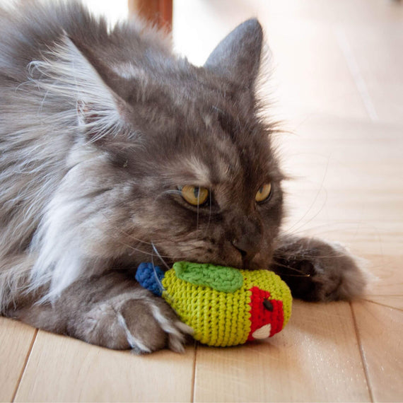 FURST - The Green Parakeet is a high-end and interactive toy for a throwing cat