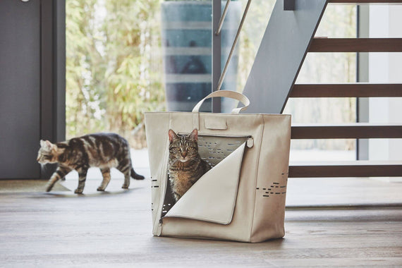 FURST - Beautiful travel bag for transporting your cat in suede color sand