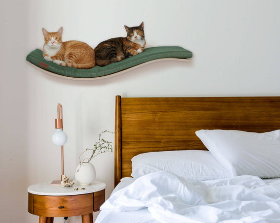 FURST - Cats perched on a wall shelf with an elegant cushion of green color