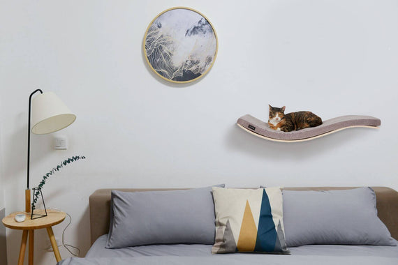 FURST - Cat from the top of his wall perch on a soft cushion of cappuccino color