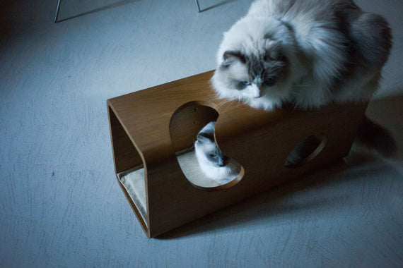 FURST - Legno den for cats