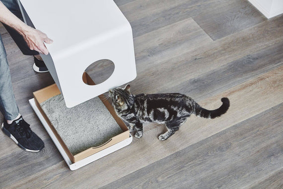 FURST - Sito bathroom cabinet for cat and its cardboard refill for a good hygiene