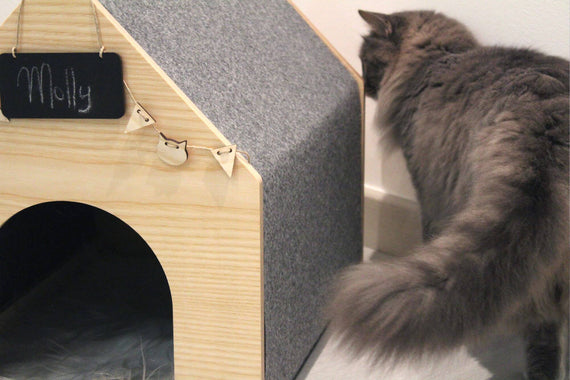 FURST - Design Studio Cat Lair