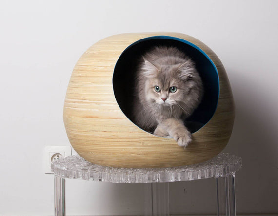 FURST - Design ball lure for high-end natural bamboo wood cat in blue interior color