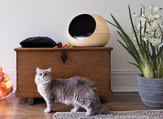 FURST - Design ball lure for high-end natural bamboo cat in black interior color