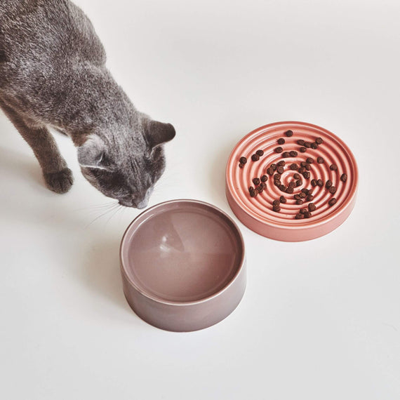 FURST - High-end shallow ceramic bowl for purple pink cat