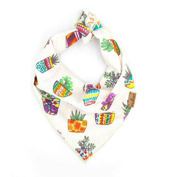 FURST - Coconut bandana for dog and colorful cactus pattern