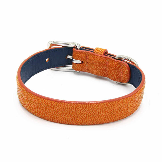FURST - High quality shagreen collar for medium dog color canary