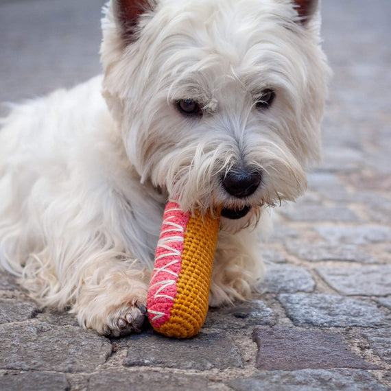 FURST - Westie with his toy Éclair Strawberry for dog