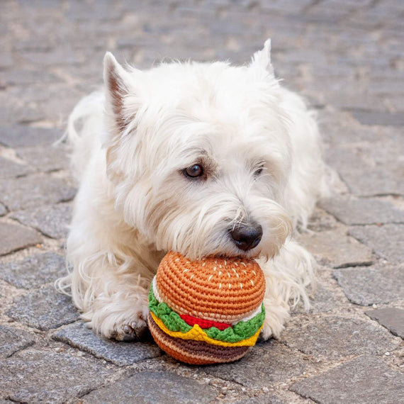 FURST - Westie with his toy Yummy Burger for dog