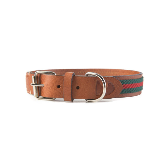 FURST - High quality club necklace for medium and large dog in high quality Italian leather in green and red color