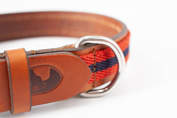 FURST - High-end club collar for medium and large dog in high quality Italian leather in red and blue color