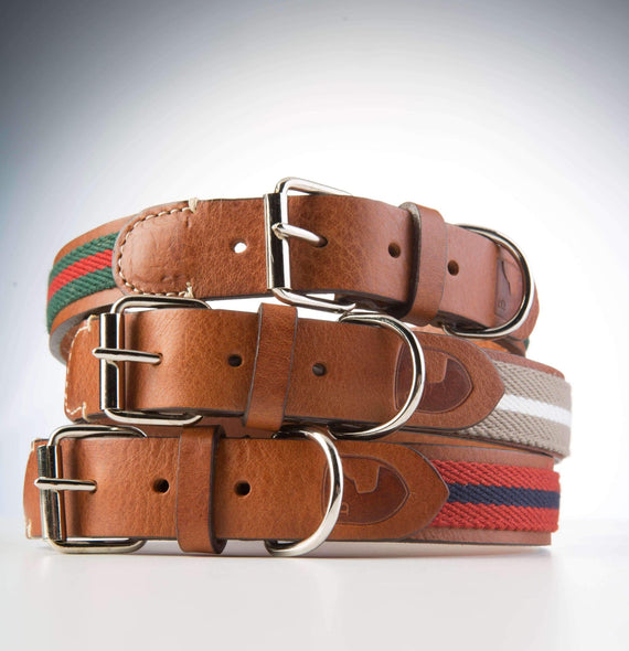 FURST - Collection of high-quality club necklaces for medium and large dogs in high quality Italian leather