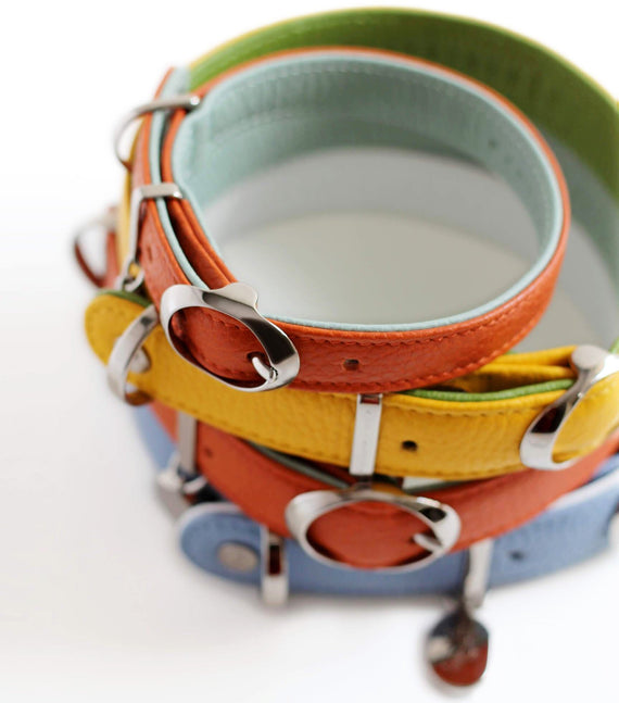 FURST - A collection of high-quality dog ​​collars in high quality Italian leather multicolored