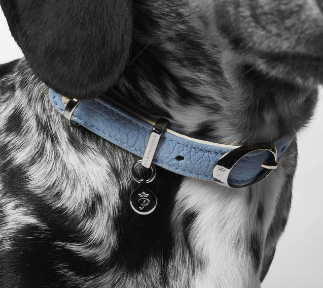 FURST - Elegant high quality dog ​​collar made of high quality Italian leather in sky blue and white color