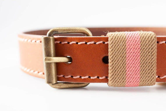 FURST - High-end Polo collar for medium and large dog in high quality French leather pink color