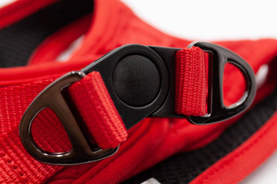 FURST - High-end Deschanel dog harness in quilted jersey in bright red and intense black