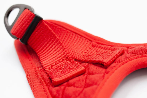 FURST - High-end Deschanel harness for cats in quilted jersey in bright red and intense black