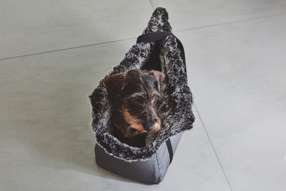 FURST - Small dog in a travel bag Via anthracite