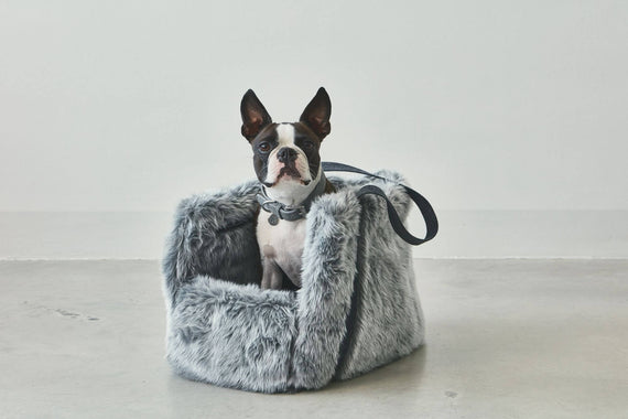 FURST - Adorable French Bulldog in her gray Via travel bag