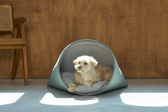 FURST - Gumi high-end den container in the form of a cellar for a small dog in duck blue color