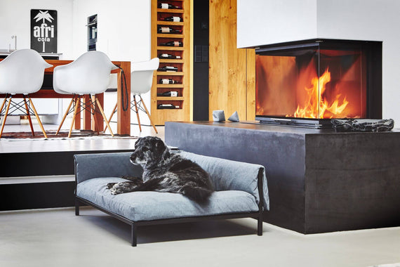 FURST - Pleasant moment in the fireside for this dog on his sofa, left angle, light gray