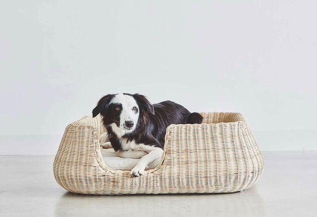 FURST - Elegant basket mio for medium dog in natural braided rattan with its cream cushion