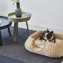 FURST - Adorabile Boston terrier in un cestino in rattan adatto per il cagnolino con il suo cuscino color crema