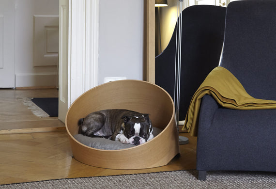 FURST - French bulldog sleeping in a covo interior design dog basket in oak with its sand-colored cushion