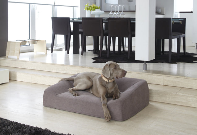 FURST - Luna tundra sofa adapted to the comfort of the dog in a deco interior
