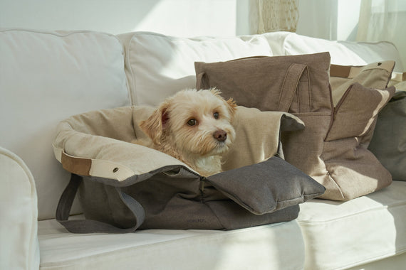 FURST - Small dog in his travel bag anthracite color