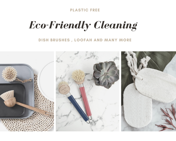 Plastic free products for wholesale