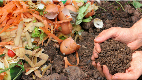 Food scraps home compost