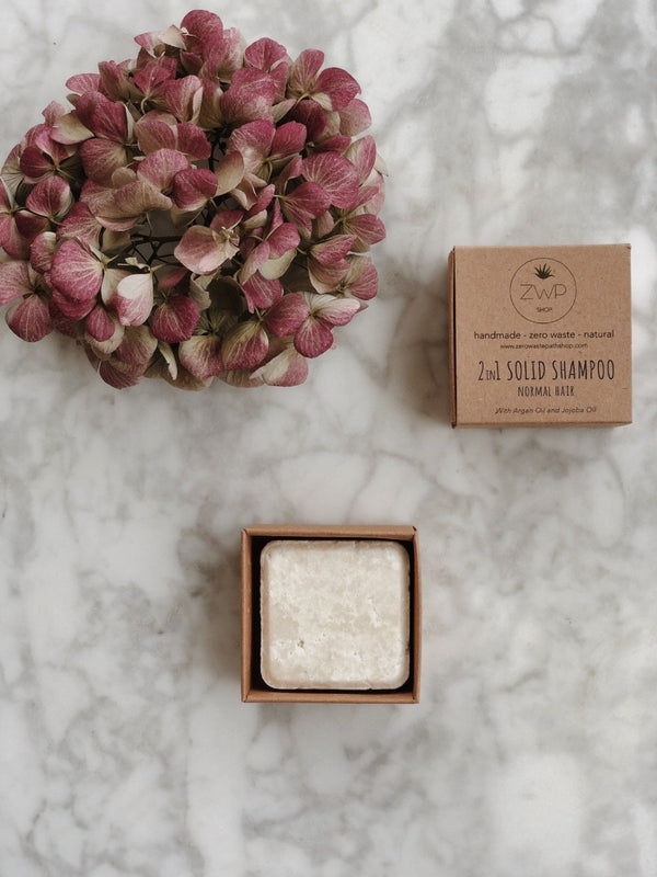 2-in-1 Solid Shampoo - Normal Hair, Zero Waste Path, The Clean Market