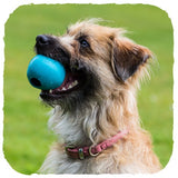 Natural Rubber Treat Ball, Dog Treats, Beco Pets, - The Clean Market