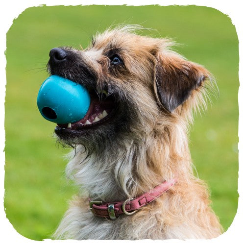 Natural Rubber Treat Ball - The Clean Market