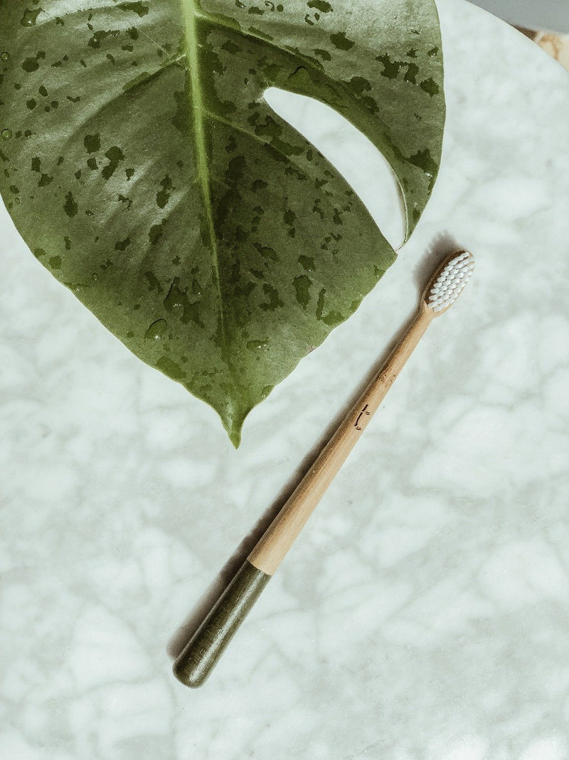 Bamboo Toothbrush - Medium - Olive, Toothbrush, Truthbrush, - The Clean Market