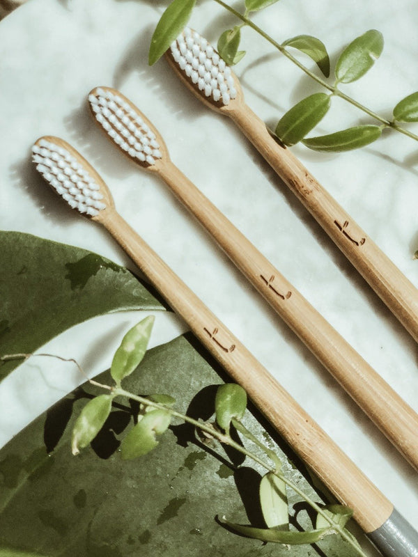 Close-up of three sustainable bamboo toothbrushes on white marble surrounded by green plants