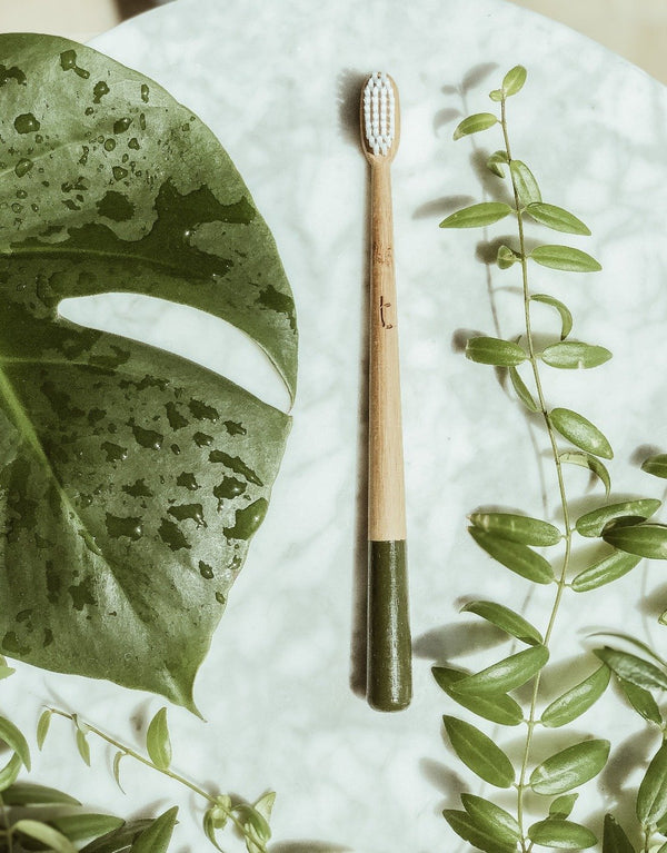 A sustainable olive bamboo toothbrush on white marble surrounded by green plants