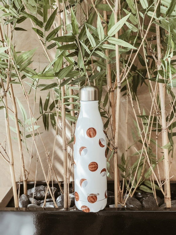 Insulated stainless steel bottle by Qwetch with coconut design with bamboo plants in the background
