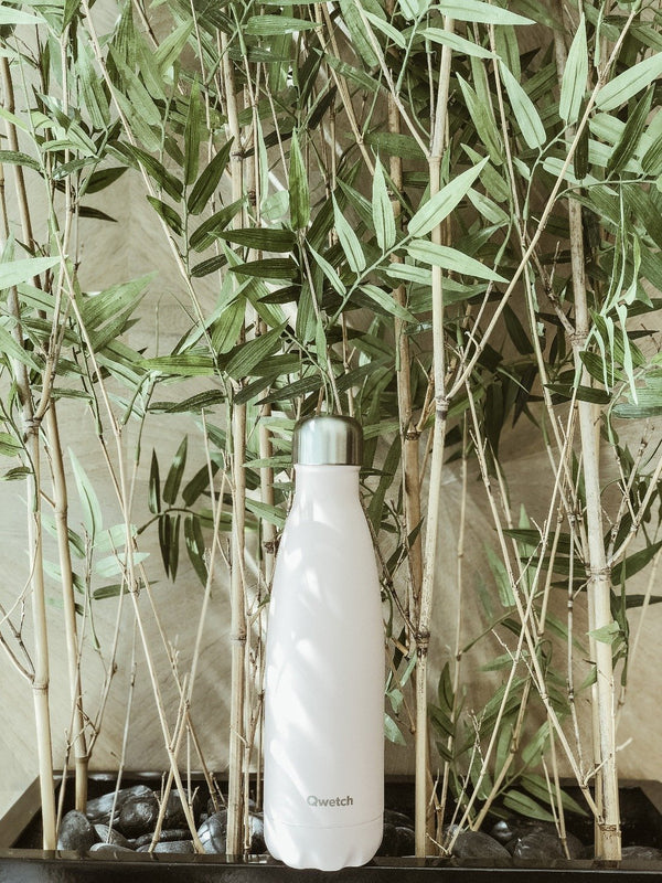 Sustainable insulated stainless steel bottle in pastel pink by Qwetch in front of bamboo plant