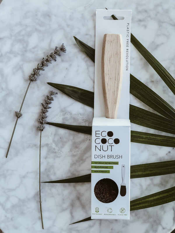 Coconut Dish Brush, Dish Brush, Ecoliving, - The Clean Market