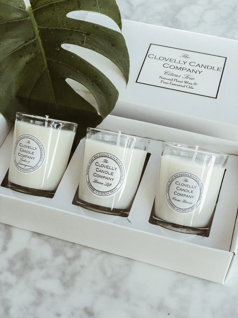 Candle Trio Gift Set - Citrus
