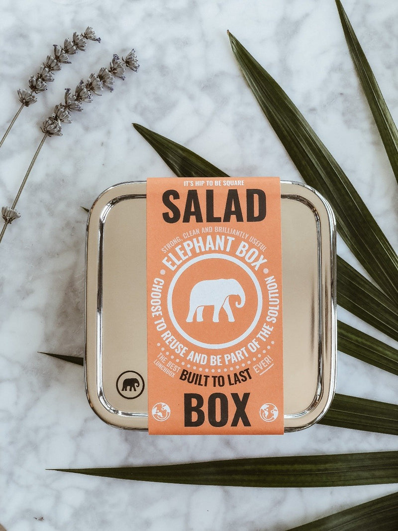 Square Salad Box - Elephant Box, Lunchbox, Elephant Box, - The Clean Market