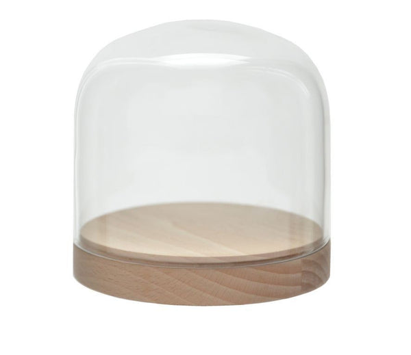 Glass Cheese Dome Natural Beech and Black